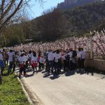 Caminata solidaria memorial Alberto Lucas Alarcon