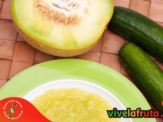 Receta facil de melon casera