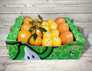 fuente de vitamina c naranja, mandarinas, limones, pomelos