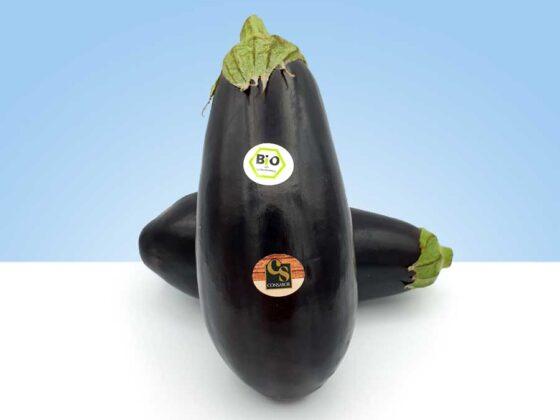 fruta y verdura de cultivo ecologico biologica