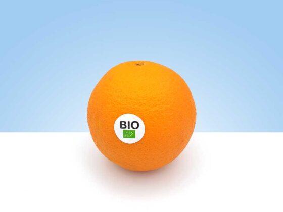 los mejores citricos provienen de valencia