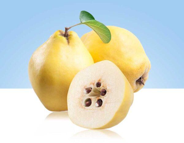 membrillo es el fruto del árbol llamado también membrillo o membrillero
